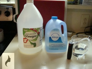 Magic Vinegar Solution 1